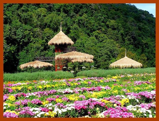Doi Ang Khang