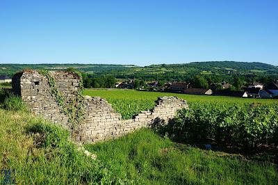 LeChameau Bleu - Blog  Voyage et Cuisine - Escapade à Santenay en Bourgogne