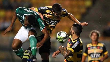 Assistir Palmeiras x Peñarol AO VIVO grátis em HD 12/04/2017 - Libertadores