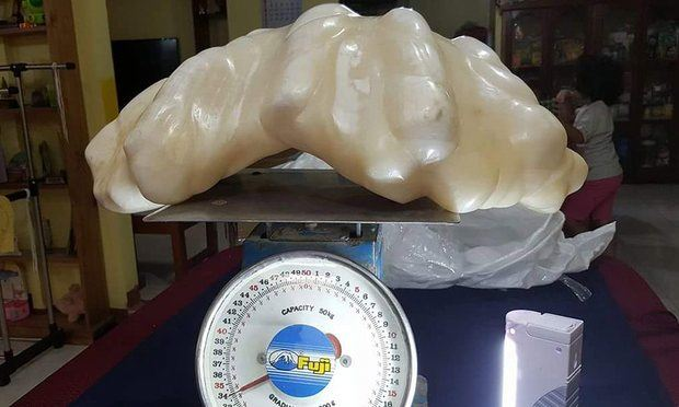 The World's Biggest Natural Pearl Discovered in Tourism Office at Puerto Princesa City