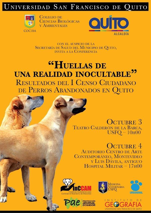 Resultados del 1er Censo Ciudadano de Perros Abandonados en Quito