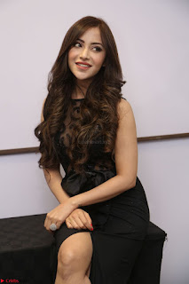 Angela Krislinzki in Transparent Black Gown at Rogue Movie Teaser Launch 1st March 2017 068.JPG