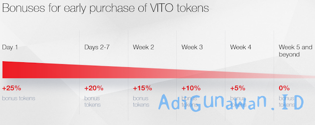 Lending program viso token, Networking viso token