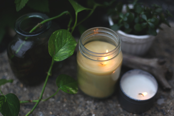 DIY Citronella Candles Fix Bugs