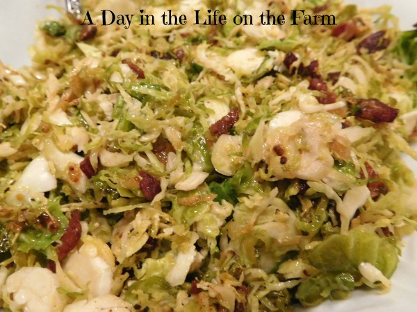 Warm Brussels Sprouts Slaw by A Day in the Life on the Farm