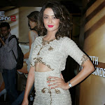 Surveen Chawla   Hot Photos at Hate Story 2 First Look Launch