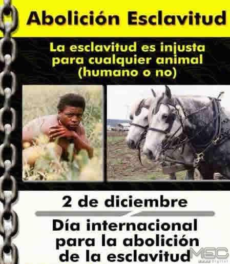 Esto Paso Día Internacional Para La Abolición De La