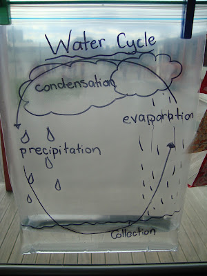 Water Cycle Experiment Research