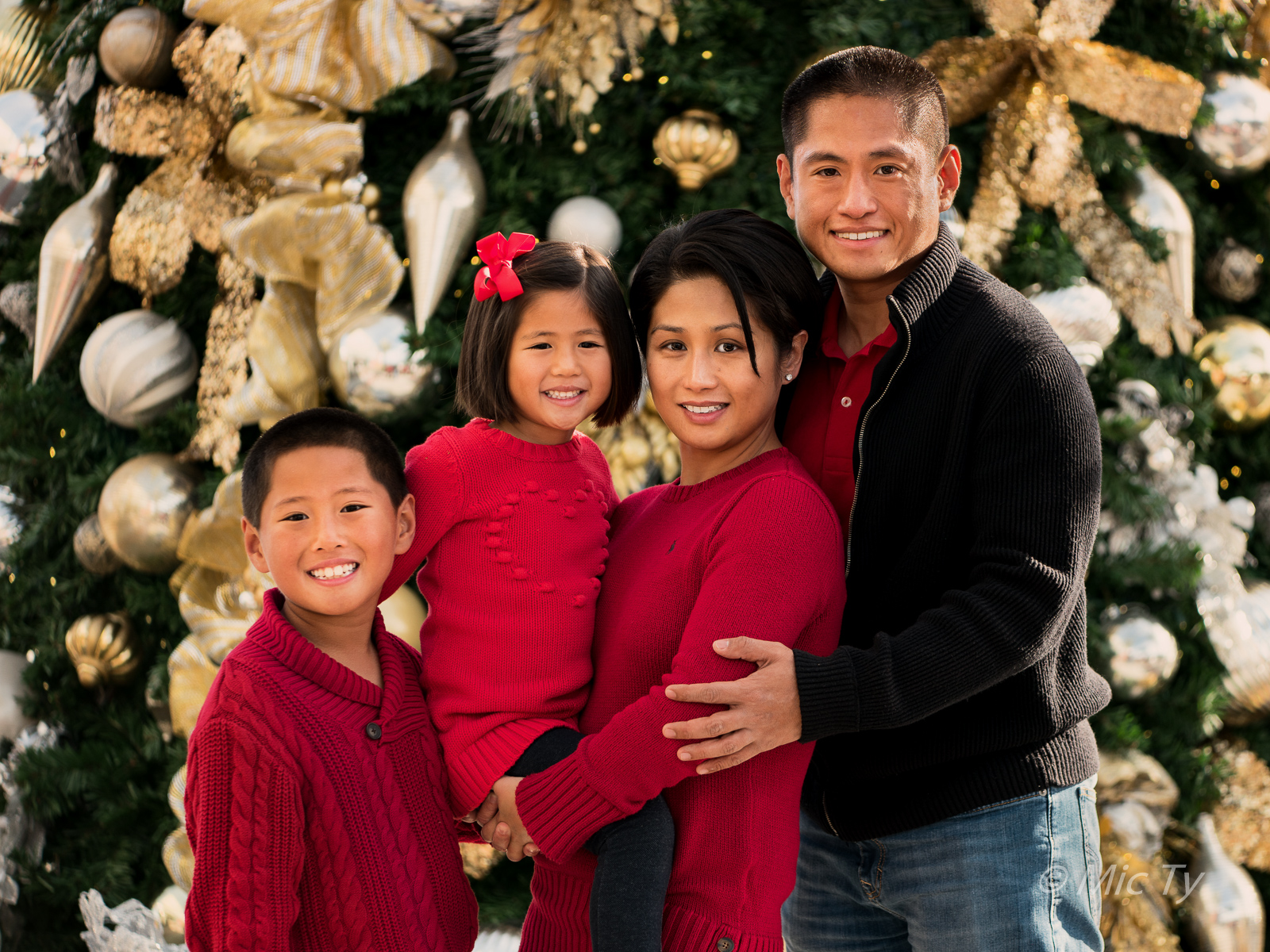 better family photos traditional christmas family portrait with