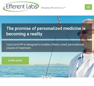 Efferent Labs Develop Implantable Biosensors To Personalize Chemotherapy