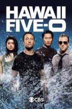 Hawaii Five-0 S08E13 What is Gone is Gone Online Putlocker