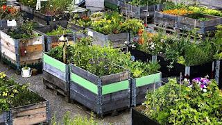 Huerto-cercos-modulos-madera-aros-palet-jardin