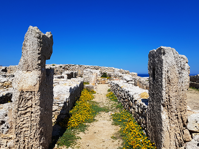 TUNISIE CAP BON BLOG NIMOISE NIMES 1