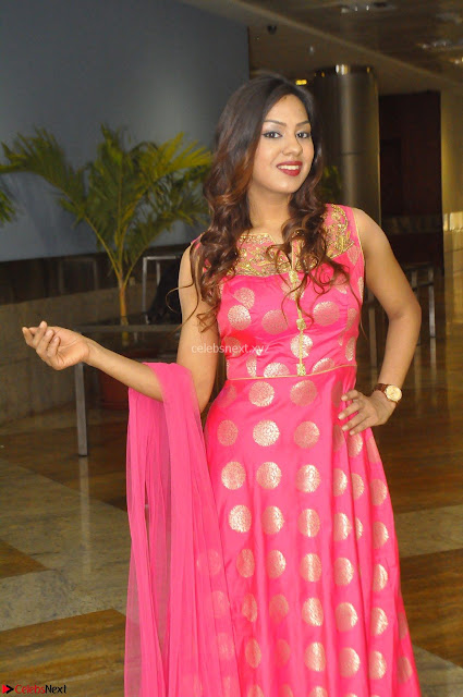 Sindhu Shivarama in Pink Ethnic Anarkali Dress 01.JPG