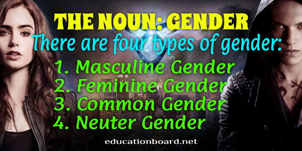 Gender: Noun and Gender, Types/Kind and Examples