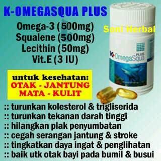 Obat herbal penyakit stroke omega squa pasti murah di madu herbal