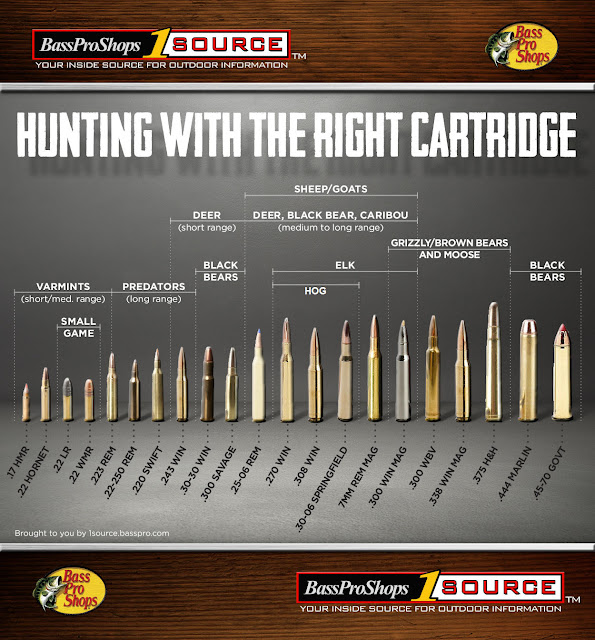 Ammo Selection Comparison Chart For Game Animals
