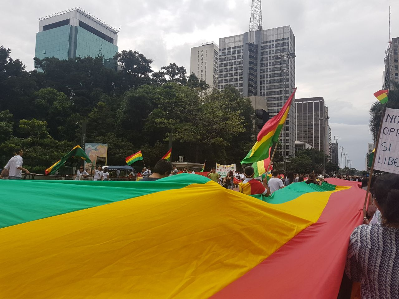 Movilización ciudadana de hoy en Brasil por la defensa de la democracia boliviana / RRSS