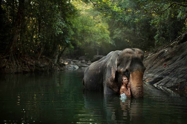 Beautiful photography with wild animals by Russian photographer Katerina Plotnikova