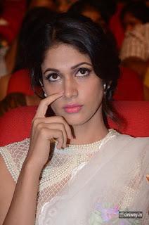Lavanya Tripathi Stills at Babu Bangaram Movie Audio Launch