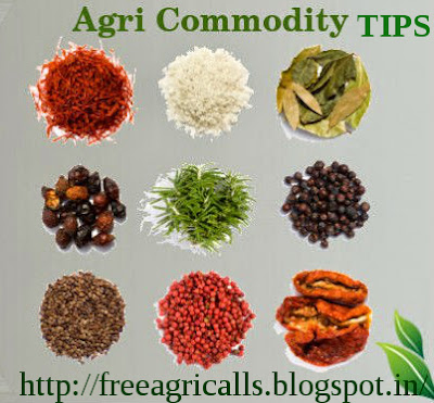 Agri commodity calls, Agri Commodity Tips, Chana Tips, Free  Commodity Tips, Free Agri Tips, Jeera Tips, MCX Crude palm oil tips, MCX Tips Services,