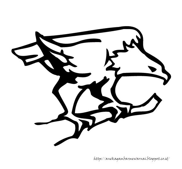 Gambar Mewarnai Burung Elang 3
