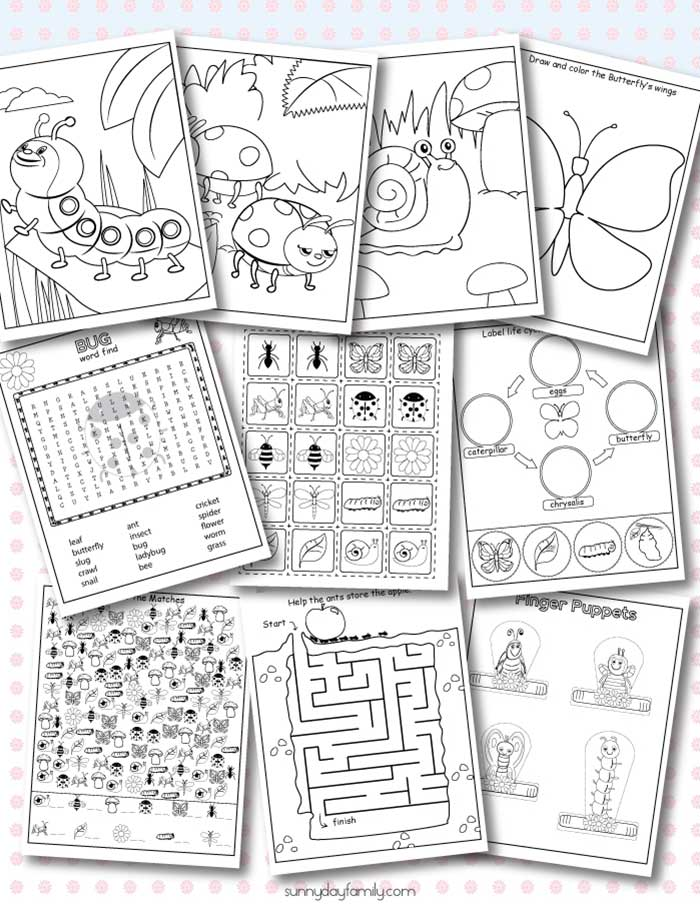 10 Free Printable Insect Activity Pages & Coloring Sheets