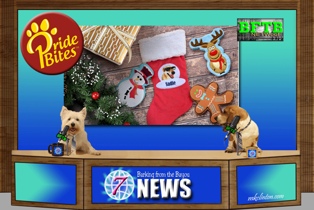 BFTB NETWoof News report on PrideBites