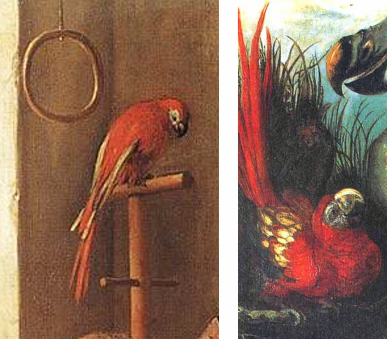 Steen Strip A Trio Of New Mystery Macaw Cases Where Monsters Dwell