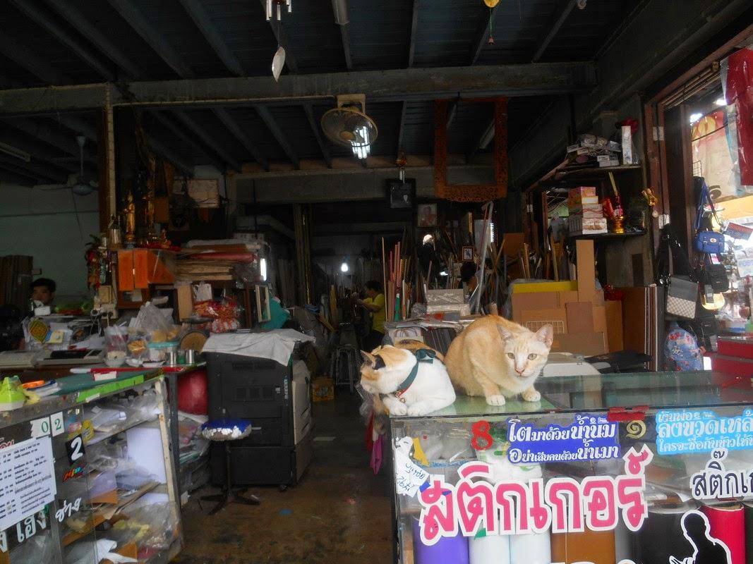 mercatomaeklong thailandia