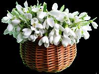 Cesto de flores brancas png