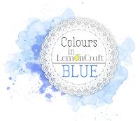 VIP challenge - BLUE