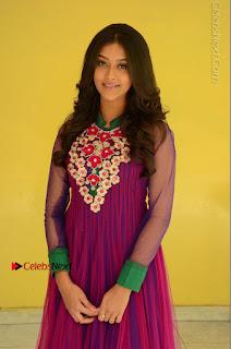 Actress Pooja Jhaveri Latest Stills in Purple Salwar Kameezt at Dwaraka Success Meet  0105.JPG