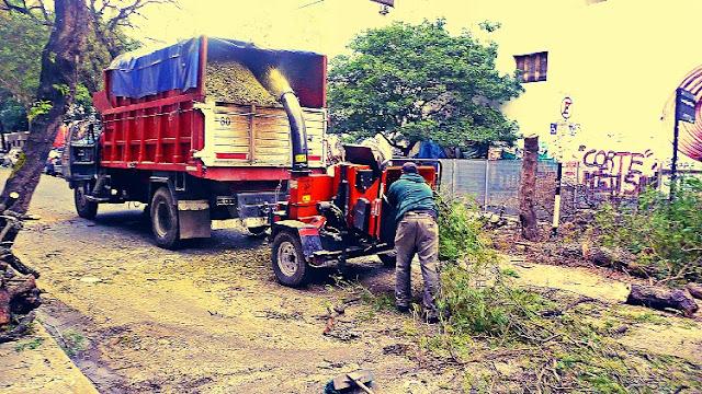 Hombres procesando las ramas de la poda