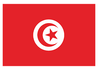 Tunisia flag Logo Vector