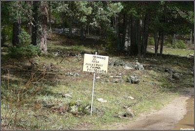 Aviso para caminantes en los alrededores de El Hosquillo (fotografía ya un poco antigua)