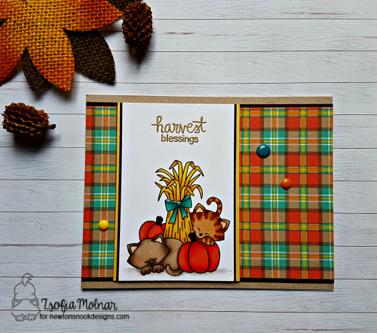 Harvest Blessings by Zsofia features Autumn Newton by Newton's Nook Designs; #newtonsnook