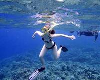 Wisata Pantai dan Wisata di Dalam Laut Sulawesi Utara