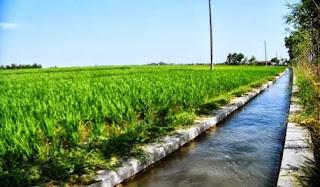 Benahi Tata Kelola Penanganan Air Sungai