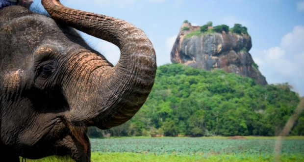 Sri Lanka exploration tour