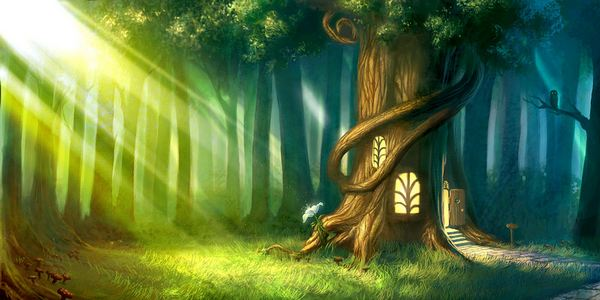 """""""trarre giovamento dall'atmosfera della foresta"""" o """"bagno ..."""