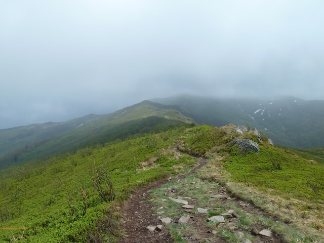 najpiękniejsze szlaki Bieszczadów