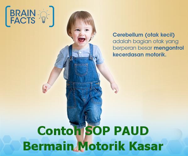 perkembangan motorik kasar anak usia 5-6 tahun motorik kasar dan halus pada anak motorik kasar bayi
