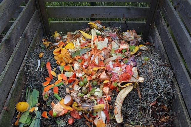 Recicla tu basura produciendo abono orgánico