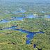 5 حقائق مثيرة عن غابات الأمازون المطيرة