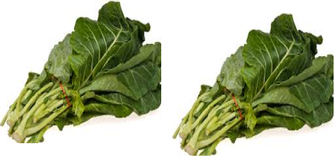 Collard green meaning in hindi, Spanish, tamil, telugu, malayalam, urdu, kannada name, gujarati, in marathi, indian name, marathi, tamil, english, other names called as, translation