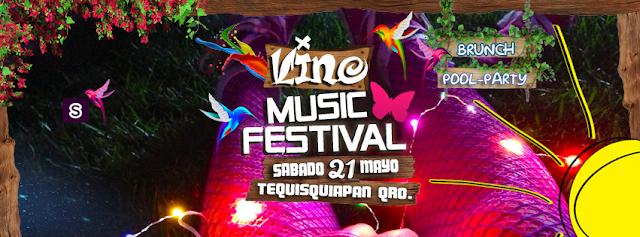 line up, vino, música festival