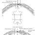 Teknik Operasi Laparotomy (Celiotomy) pada Hewan