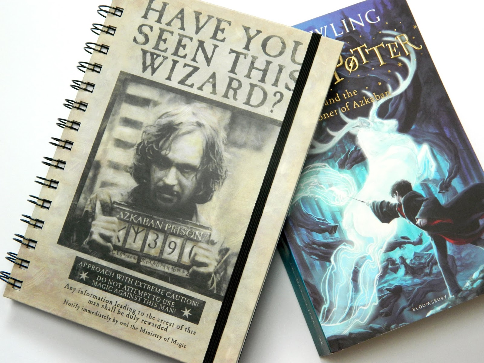 Harry Potter Notebooks From Poundland Raiin Monkey