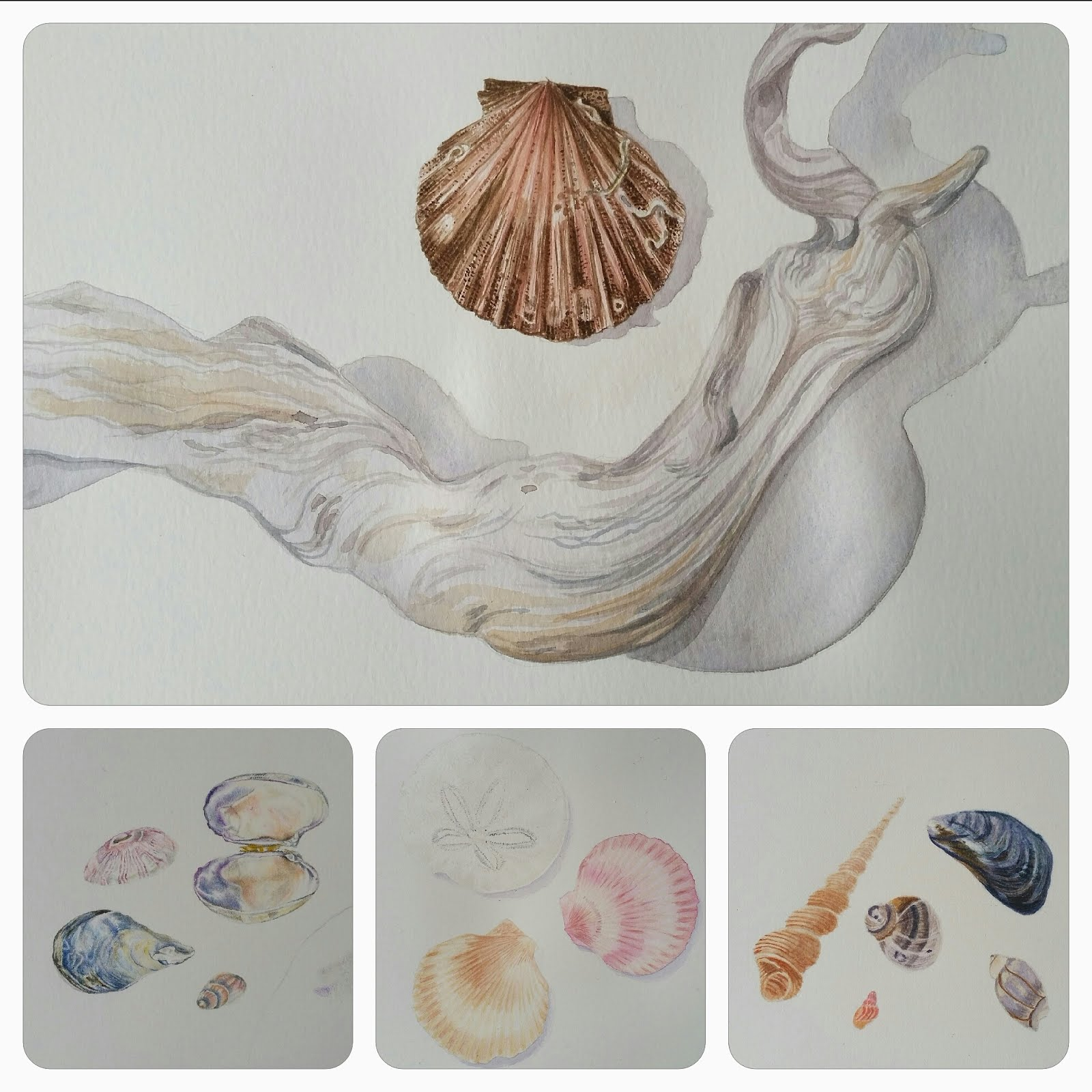 Student's work - The Seashore Palette